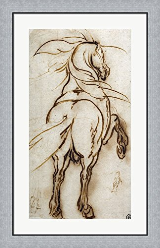 Study of a Rearing Horse by Jacques Callot Framed Art Print