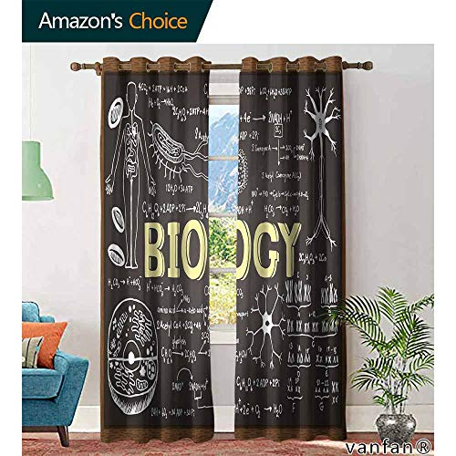 Big datastore Educational backout Curtains for bedroomBlack Chalkboard Biology Hand Written Symbols School Classroom Childrens Living Room Bedroom W72 x L84 Black Brown Pale Yellow