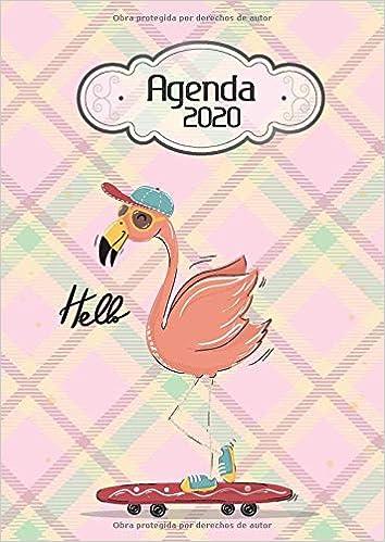Agenda 2020 Hello: Tema Flamingos Agenda Mensual y Semanal + ...