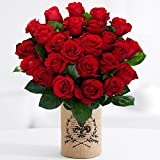 ProFlowers - 24 Count Red 0 Two Dozen Red Roses w/Free Vase - Flowers
