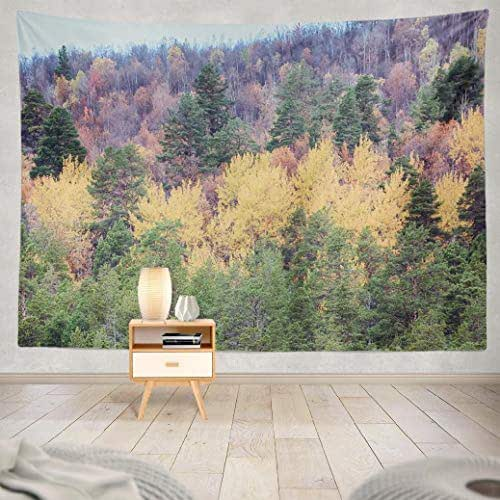 Deronge Tapestry Wall Hanging Autumn Forest Golden and Birch Sad Beauty Tapestry Wall Art Decor 60x80 Inch Wall Tapestry for Men Bedroom Home Decor Decorative Tapestry Dorm