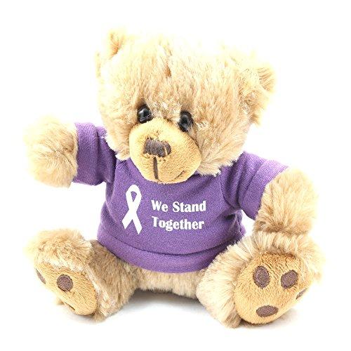 Purple Awareness Teddy Bear