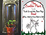 "(2) ZOMBIE PLANT Party Favors - Touch it and it ""Plays DEAD"" Minutes later it comes back to life! Great Gift for a Zombie Themed Birthday Party."