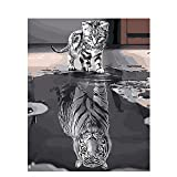 DIY Oil Painting, Paint by Number Kit for Home Wall Decoration Art Gift Cat and Reflection of Tiger 16*20 Inch