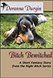 Bitch Bewitched (The Right Bitch Story Series Book 3)