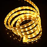 led strip 110V SMD 5050 Waterproof flexible light US Plug 1m 2m 5m 10m 20m 100m (50m led strip + US plug, warm white)
