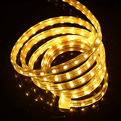 led strip 110V SMD 5050 Waterproof flexible light US Plug 1m 2m 5m 10m 20m 100m (50m led strip + US plug, warm white) by XUNATA