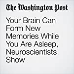 Your Brain Can Form New Memories While You Are Asleep, Neuroscientists Show | Ben Guarino