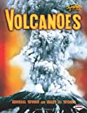 Volcanoes, Michael Woods and Mary B. Woods, 0822547155
