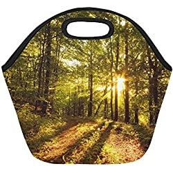 Insulated Neoprene Lunch Bag Free Hd Forest Wallpapers Mac Desktop Download Large Size Reusable Thermal Thick Lunch Tote Bags For Lunch Boxes For Outdoors,work, Office, School