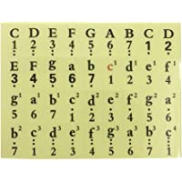 VORCOOL Piano Stickers for Keys Piano Keyboard Stickers for 61, 54, 49 Keys Color