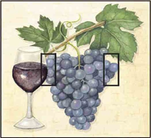 grapes light switch cover - 4