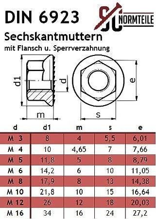 - M8x70 - - Vollgewinde Edelstahl A2 mit Sperrverzahnung DIN 603 // DIN 6923 - SC603 // SC6923 Sperrzahnmutter V2A 10 St/ück Flachrundschrauben mit Flanschmuttern Schlossschrauben