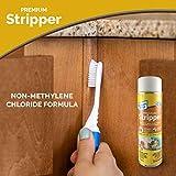 Premium Spray Stripper Aerosol Non-Methylene