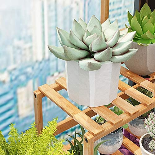 Plant Display Flower Stand Living Room Solid Wood Multi-Layer Balcony Floor Flower Stand SPLY DTEM Window Sill Flower Stand Garden Bedroom Step Flower Stand