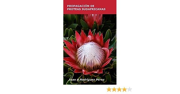 Amazon.com: PROPAGACIÓN DE PROTEAS SUDAFRICANAS (Spanish Edition) eBook: JUAN A. RODRÍGUEZ PÉREZ: Kindle Store