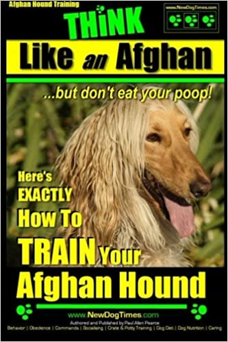 Afghan Hound Training | THiNK like an Afghan ~ but don't eat