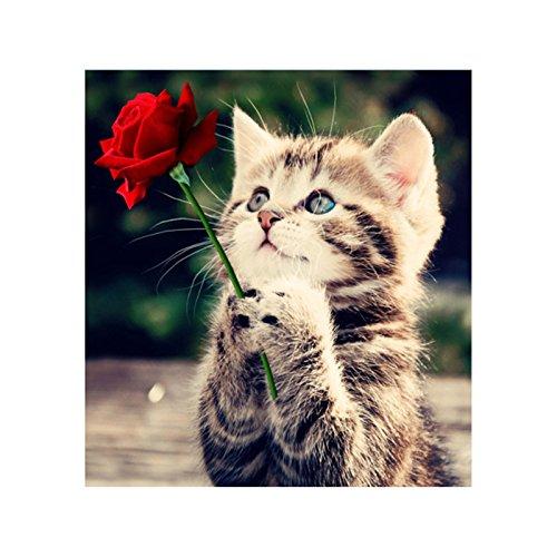 PQUSNO 5d diy Diamant Malerei Kreuzstich Blume Katze runde Diamant stickerei Rose Katze tier Diamant Mosaik Wohnkultur