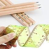 Flexible Ruler 12 inch 2 Per Pack and Pre-sharped 2B Art Sketching Pencil 6 Per Pack
