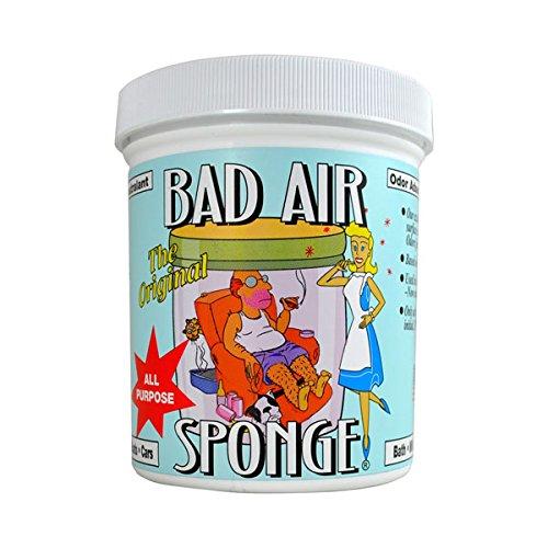 Bad Air Sponge Air Odor Absorbent, 14 ounce, 2-Pack by Bad Air Sponge