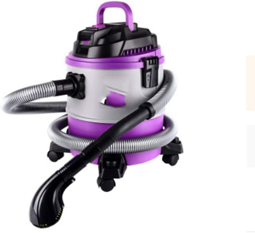 Cleaner Aspiradora Pet hogar húmedo y seco pequeño Gato de Mano y Pelo de Perro Aspirador: Amazon.es: Hogar