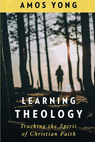 Learning Theology: Tracking the Spirit of Christian Faith