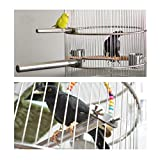 Wontee Bird Perch Stand Stainless Steel Paw