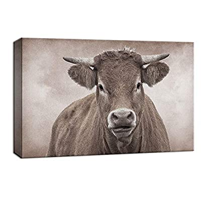 Stare of the Bull - Canvas Art