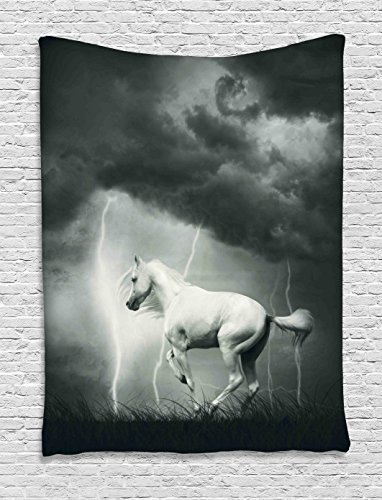 Ambesonne Animal Decor Collection, Horse Running under Thunderstorm Clouds with Lightning Dreamy Dramatically Aim Print, Bedroom Living Room Dorm Wall Hanging Tapestry, Black and White