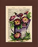 Vintage Dictionary Art Print-Purple Poppy Anemone Flowers (Ranuncula)