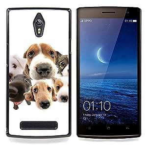 Ihec Tech Beagle Labrador Retriever Perros Raza / Funda Case back Cover guard / for OPPO Find 7 X9077 X9007