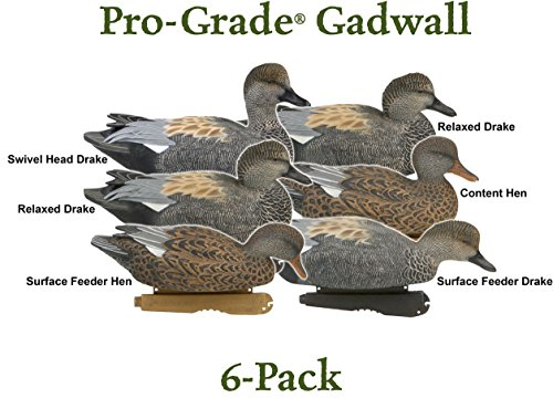 Avery Pro-Grade Gadwall Duck Decoys (6 PACK) - 73145