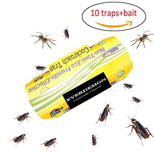 INSECT TRAP Ants&Spiders&cockroach&insects Glue Trap Wish Non-Poison Bait Included,Physical Efficient Pest Bug Killer Sticky Non-Toxic and Eco-Friedly-10 Pack