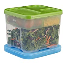 Rubbermaid LunchBlox Salad Kit, Food Storage Container, BPA-free Plastic, Guacamole, Green (1968718)