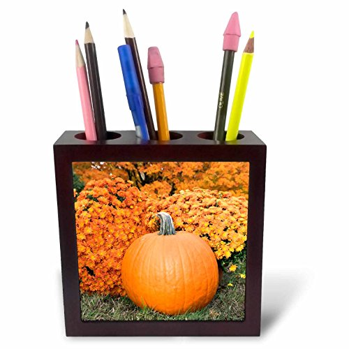 3dRose Danita Delimont - Autumn - Pumpkin And Mums, Fall Foliage, Reading, Massachusetts, Usa - 5 inch tile pen holder (ph_279052_1) Mums Pumpkins