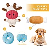 Toozey Puppy Toys for Small Dogs, 7 Pack Small