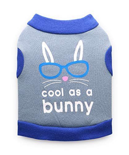 DroolingDog Pet Easter Clothes Fleece Vest Cute Puppy Shirts