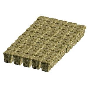 Grodan 1″ x 1″ Starter Plug Rockwool Hydroponic Grow Media (50 Cubes) (Full Size) (50 Cubes) (Full Size)