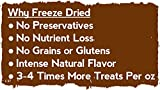 Whole-Life-Pet-Single-Ingredient-USA-Freeze-Dried-Chicken-Breast-Treats-for-Cats-4-Ounce