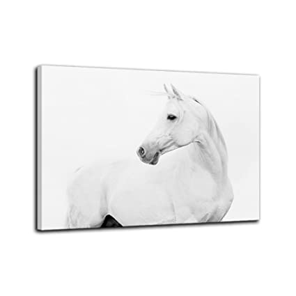 598b5e199d2 AMEMNY Wall Decor for Living Rooms White Horse Canvas Painting Modern Art  Home Decor Wall Artwork