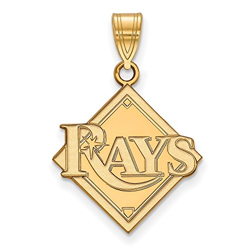 Roy Rose Jewelry 14K Yellow Gold MLB LogoArt Tampa Bay Rays Large ()