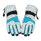 FidgetFidget Glove Waterproof Windproof Snowboard Glove Skiing Snowboarding
