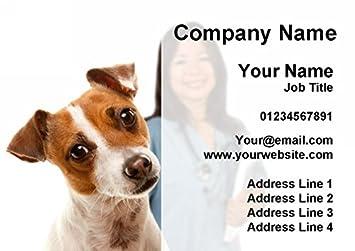 Veterinario Veterinary Perro Tarjetas De Visita Personalizadas 500