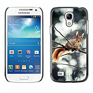 "Print Motif Coque de protection Case Cover // M00313303 Coco vegetariana saludable de alimentos // Apple iPhone 6 6S 6G 4.7"""