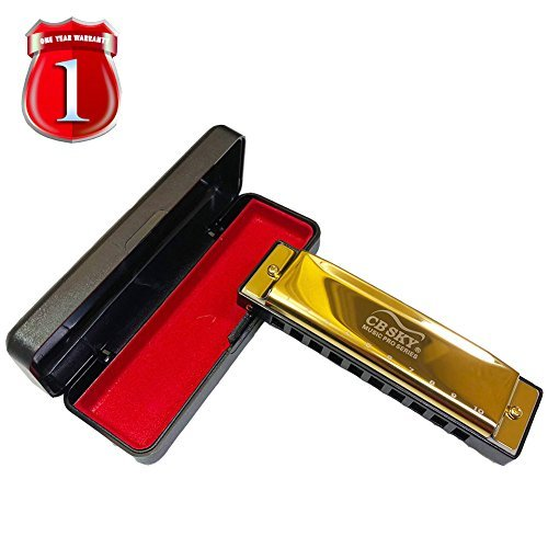 REZIPO Armónica estándar de 10 Agujeros 20 Tonos Clave de C Blues para Principiantes, Estudiantes, niños y Jugadores...