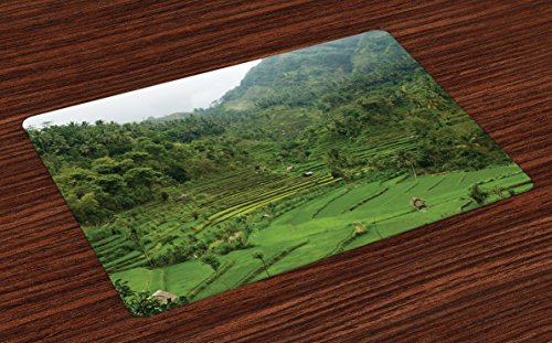 Cheap  Ambesonne Balinese Place Mats Set of 4, Terraced Rice Paddies in Hillside..