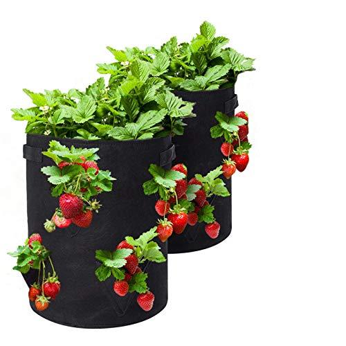 Tvird Pflanzen Tasche,Kartoffel Pflanzsack Pflanzbeutel 10 Gallonen mit Griffen und Sichtfenster Klettverschluss,dauerhaft AtmungsaktivBeutel Gemüse Grow Bag Pflanztasche -2 Pack