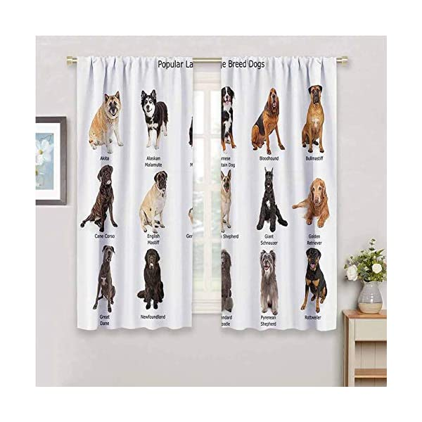 hengshu Dog Lover Decor Collection Blackout Shades Curtains Group of Large Breed Dogs Together Bullmastiff Alaskan Akita Bernese for Window Curtains Valances W52 x L45 Inch Beige Brown Black 2