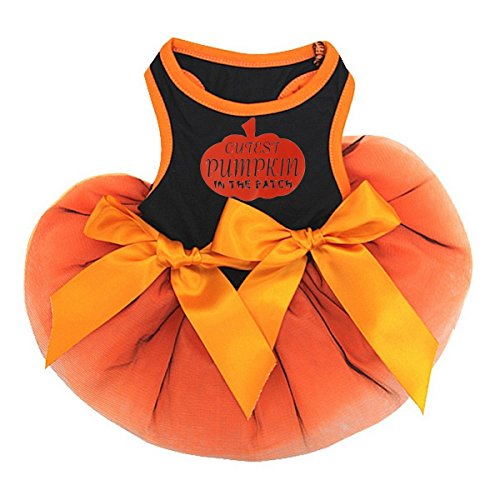 Kirei Sui Halloween Pets Tutu Medium Cutest Pumpkin In The (Cutest Dog Halloween Costumes)