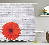 garden design pictures Ambesonne Vintage Home Decor Shower Curtain Set, Hot Red Daisy Flowers on Rustic Wood Wall Design Picture Garden Gerbera Plant, Bathroom Accessories, Polyester Fabric, 75 Inches Long, Light Grey Red